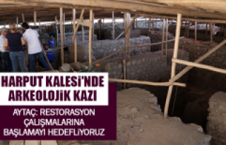 HARPUT KALESİ'NDE ARKEOLOJİK KAZI
