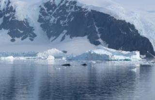 Kutuplardaki son manyetik alan yer değişimi 22 bin...