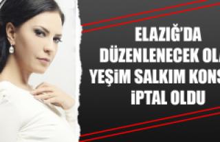 Elazığ'da Düzenlenecek Olan Yeşim Salkım Konseri...