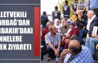 Milletvekili Demirbağ'dan Diyarbakır'daki Annelere...