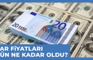 10 Ekim Dolar - Euro Fiyatları