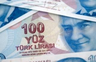 Barış Pınarı Harekatı'nda TL varlıklarda...