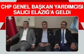 CHP Genel Başkan Yardımcısı Salıcı Elazığ'a...