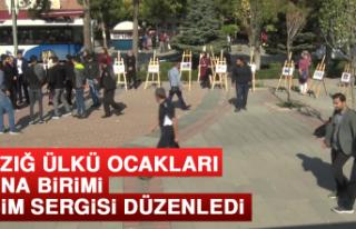 Elazığ Ülkü Ocakları Asena Birimi Resim Sergisi...