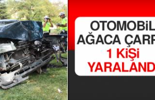 Otomobil Ağaca Çarptı, 1 Kişi Yaralandı