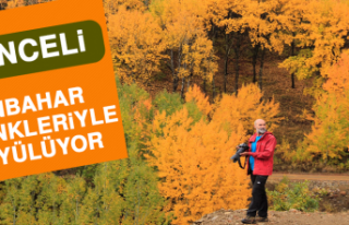 Sonbahar Renkleriyle Büyüleyen Tunceli'ye Fotoğrafçı...