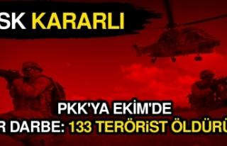 TSK Kararlı, PKK'ya Ekim'de ağır darbe:...