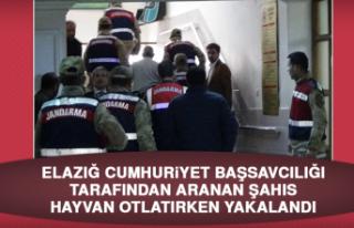 Elazığ Cumhuriyet Başsavcılığı Tarafından...