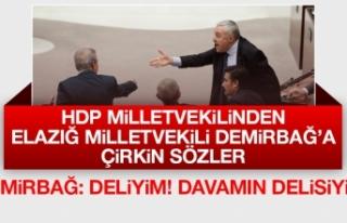 HDP Milletvekilinden, Zülfü Demirbağ'a Çirkin...