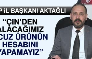 İl Başkanı Aktağlı'dan Doğu Türkistan...