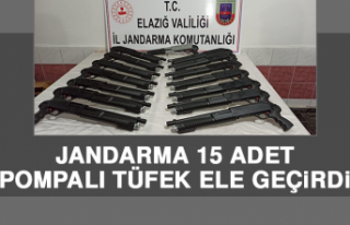 Jandarma 15 Adet Pompalı Tüfek Ele Geçirdi