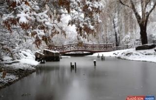 Kış cenneti Erzurum'da kar yağışı ile kartpostallık...
