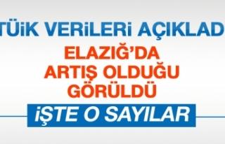TÜİK Elazığ'daki Kasım Ayı Rakamlarını...