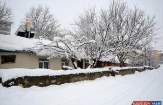 Van ve Bitlis'te kapalı yollar ulaşıma açılıyor