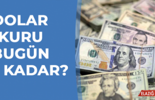 26 Şubat Dolar - Euro Fiyatları