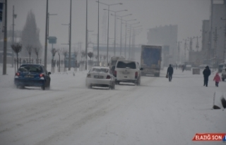 Ağrı'da yoğun kar yağışı sürücülere zor...