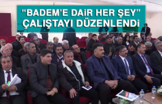 """Badem'e Dair Her Şey"" Çalıştayı Düzenlendi"