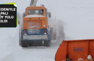 Kar Nedeniyle Kapalı 487 Köy Yolu Açıldı