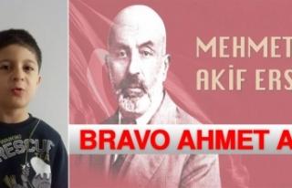 Bravo Ahmet Alp