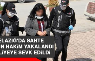 Elazığ'da Sahte Kadın Hakim Yakalandı, Adliyeye...