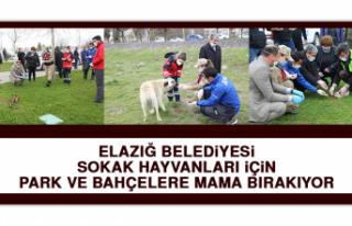 Elazığ Belediyesi Sokak Hayvanları İçin Park...