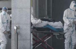 Yurt dışında 222 Türk vatandaşı hayatını kaybetti