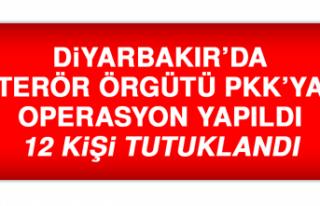 Diyarbakır'da Terör Örgütü PKK'ya Operasyon...