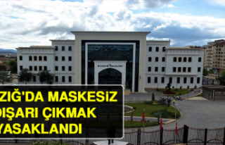 Elazığ'da Maskesiz Dışarı Çıkmak Yasaklandı