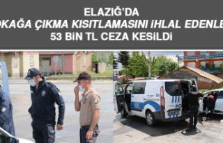 Elazığ'da Sokağa Çıkma Kısıtlamasını İhlal...