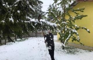 Erzincan'da mayısta yağan kar