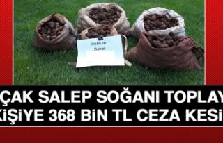 Kaçak Salep Soğanı Toplayan 5 Kişiye 368 Bin Tl...