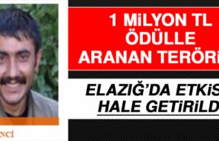 1 Milyon TL Ödülle Aranan Terörist Elazığ'da...