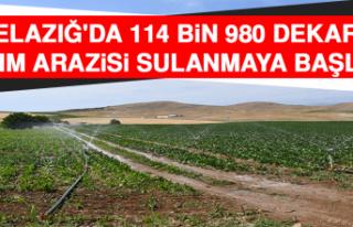 Elazığ'da 114 Bin 980 Dekar Tarım Arazisi...