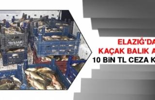 Elazığ'da Kaçak Balık Avına 10 Bin TL...