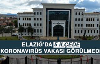 ELAZIĞ'DA 5 İLÇEDE KORONA VAKASI GÖRÜLMEDİ