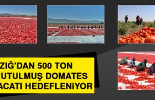 Elazığ'dan 500 Ton Kurutulmuş Domates İhracatı...