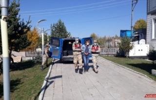 Ardahan'da evinde kubar esrar yakalanan kişi gözaltına...