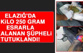 Elazığ'da 2 Kilo 250 Gram Esrarla Yakalanan...