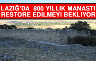 Elazığ'da Zamana Direnen 800 Yıllık Manastır...