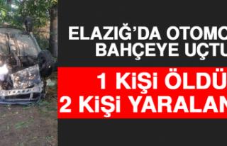 Elazığ'da Otomobil Bahçeye Uçtu:1 Ölü,2 Yaralı