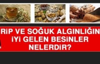 GRİP VE SOĞUK ALGINLIĞINA İYİ GELEN BESİNLER...