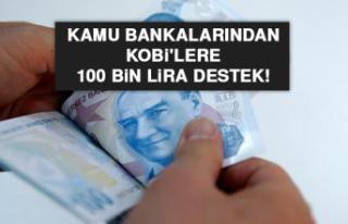 Kamu bankalarından Kobi'lere 100 bin lira destek!