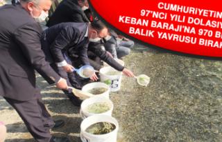 Keban Barajı'na 970 Bin Adet Balık Yavrusu...