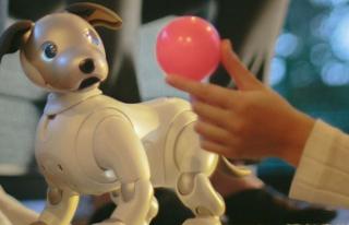 Koronavirüs Japonya'da Robot Satışlarını...