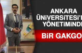 Ankara Üniversitesi'nin Yönetiminde Bir Gakgoş