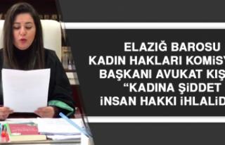 """Avukat Kışla: """"Kadına şiddet insan hakkı ihlalidir"""""""