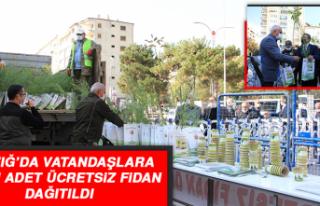 Elazığ'da Vatandaşlara 10 Bin Adet Ücretsiz...