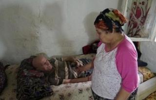 Tek odalı evde yaşayan yaşlı çift yardım bekliyor