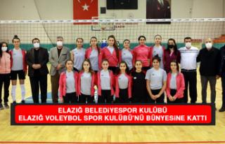 Elazığ Belediyespor Kulübü, Elazığ Voleybol...