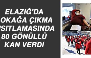Elazığ'da Sokağa Çıkma Kısıtlamasında...